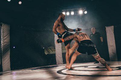 Carelia Fight XII - 2016